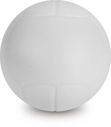 Immagine di Palla Volley