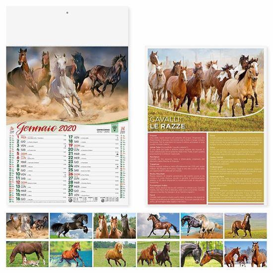 Immagine di Calendario Cavalli