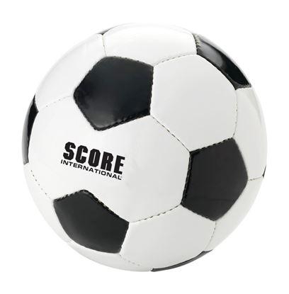 Immagine di Pallone da calcio 100052