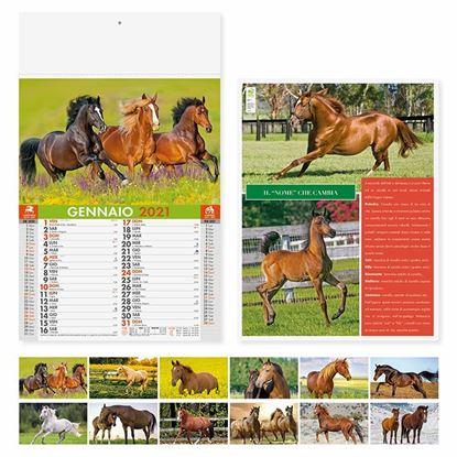 Immagine di Calendario Cavalli PA107
